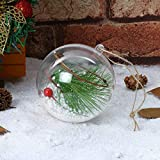Shatterproof Clear Plastic Christmas Ball Ornaments, Decorative Xmas Balls Baubles Set Filled with Artificial Snow Berry Rattan for Winter Theme Tree Decorations (D)
