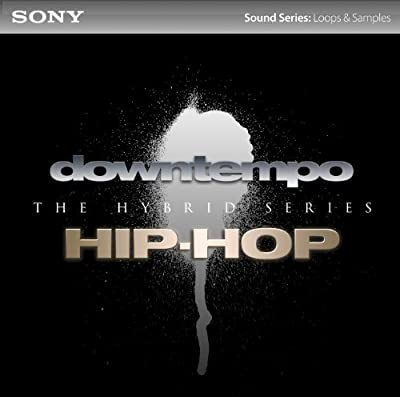 Downtempo/Hip-Hop: The Hybrid Series