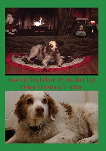 Jake the Dog Relaxes by the Yule Log (Virtual Christmas Fireplace)