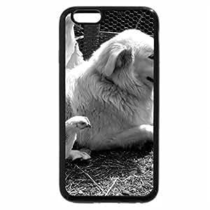 iPhone 6S Case, iPhone 6 Case (Black & White) - Maremma sheepdog