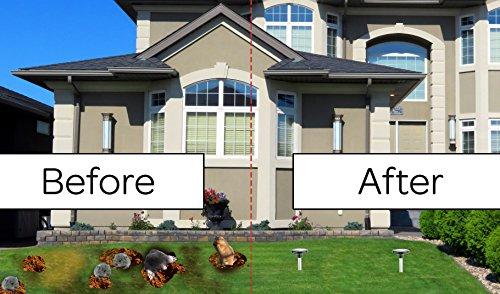 Solar Mole Repellent - (2 pack) Gopher Repellent Vole Repellent Rodent Repellent for lawn garden yard removal Ultrasonic sonar sonic Deterrent Waterproof Weatherproof replaces mole killer Pest Control