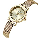 WWOOR Fashion Women's Classic Retro Ultra - Thin Stainless Straps Quartz Watch-Gold