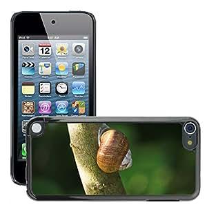 Etui Housse Coque de Protection Cover Rigide pour // M00116232 Caracol Animales Naturaleza // Apple ipod Touch 5 5G 5th