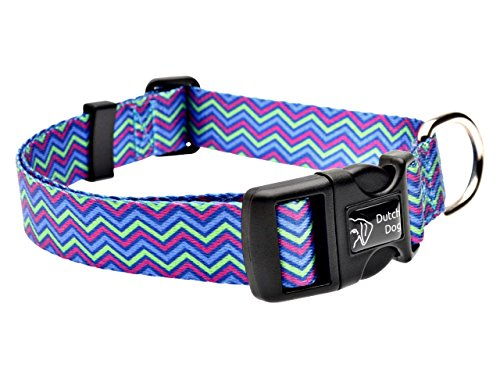 DoggyRide Fashion Dog Collar, 15 by 20-Inch, Heightened Hyacinth, Blue/Lime