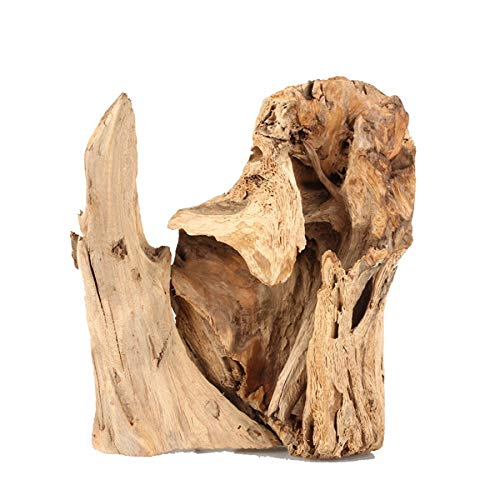 The 1 best driftwood pieces landscaping