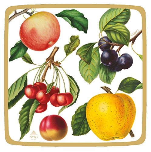 (Entertaining with Caspari Botanical Chintz Salad-Dessert Plates (Pack of 8), Ivory)