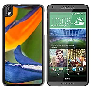 New Custom Designed Cover Case For HTC Desire 816 With Bird Of Paradise Flower Mobile Wallpaper Phone Case