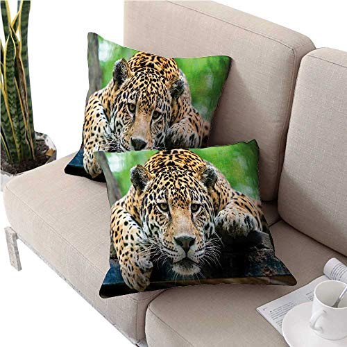 (warmfamily JungleSquare Euro Sham Cushion CoverSouth American Jaguar Wild Animal Carnivore Endangered Feline Safari Imagecute Cushion Covers 24
