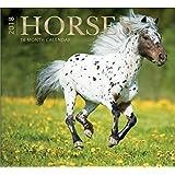 16 Month Wall Calendar 2018 - Horses - Each Month Displays Full-Color Photograph. September 2017 - December 2018 Planning Calendar