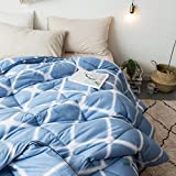 bed/bedding Warmth Full/Queen/Full/Twin Size Comforter Duvet Insert,Hypoallergenic Box Stitched,Velvet Cotton Thickening Printing duvet Core,Dream Of The Lan,220×240cm (3.8Kg)