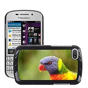 Super Stella Slim PC Hard Case Cover Skin Armor Shell Protection // M00107142 Parrot Portrait Feather Bird Head // BlackBerry Q10