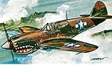 Revell 04932 P-40E WARHAWK Micro Wings Maquette avion