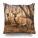 Decorativepillows 20 x 20 inch Throw Pillow Covers,Whitetail Deer Buck Doe Autumn Maple Woods Pattern Double-sided Decorative Home Decor Indoor/Outdoor Garden Sofa Bedroom Car Kitchen Nice Gift