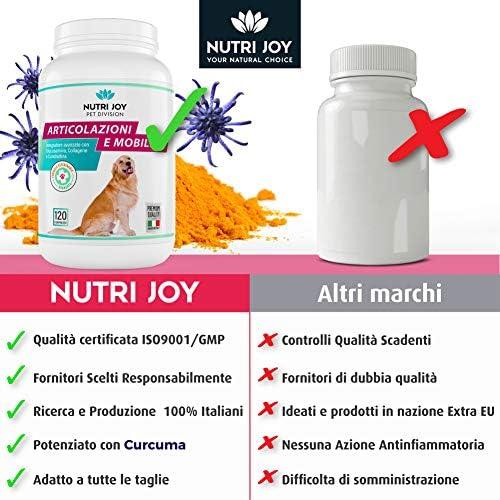 NutriJoy Complement Alimentaire pour Chien - Mobility+ Articulations de Chiens âgés - 3/6 Mois d' Apport - Chondroprotecteur Articulations