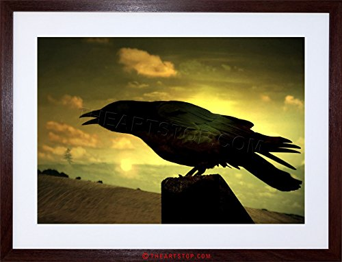 PHOTO NATURE SILHOUETTE FRAMED F12X4242 product image