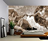 Picture Sensations Canvas Texture Wall Mural, Creation of Adam - Michelangelo, Self-adhesive Vinyl Wallpaper, Peel & Stick Fabric Wall Decal - 96x66