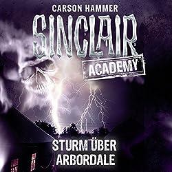 Sturm über Arbordale (Sinclair Academy 4)