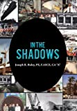In the Shadows, Joseph R. Buley, 1481708333