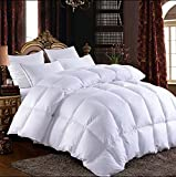 900 goose down fill - Shi Shang Pure Goose Down Comforter 900 Fill Power Down Quilt Down Duvet with 1800TC Egyptian Cotton Cover