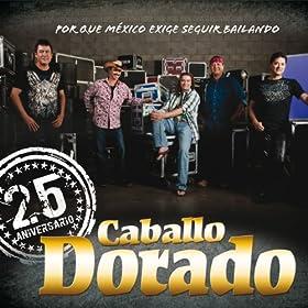 mi corazon 25 aniversario caballo dorado from the album 25 aniversario