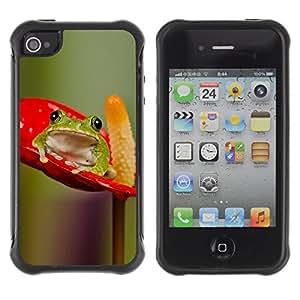 WAWU Funda Carcasa Bumper con Absorci??e Impactos y Anti-Ara??s Espalda Slim Rugged Armor -- frog anthurium red green nature -- Apple Iphone 4 / 4S