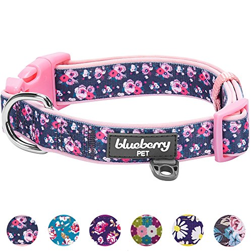 Blueberry Pet 6 Patterns Soft & Comfy Rose Prints Baby Pink Girly Padded Dog Collar, Large, Neck 18