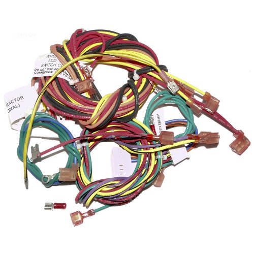 Raypak 009490F Wire Harness IID & Atmospheric ()