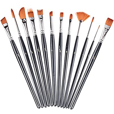 Xubox Paint Brushes Set, 12 Pieces Professional Art Paintbrushes Round Pointed Fan Tip Nylon Hair Artist Acrylic Brushes for Acrylic, Watercolor, Oil, Rock, Face, Nail, Miniature Painting, Black