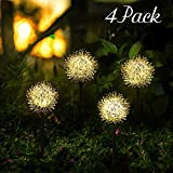 Decorative Garden Solar Lights Outdoor, Solar Powered Pathway Lights, LED Dandelion Flower Landscape Lighting on Stake for Yard/Lawn/Patio/Walkway/Driveway/Pathway (Warm White, 4 Pack)