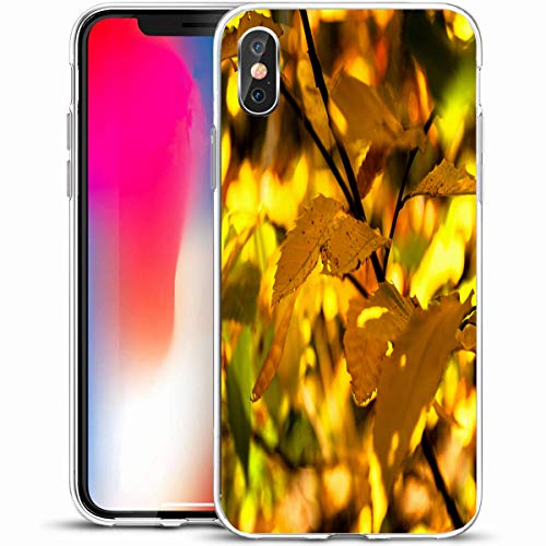 """Tobesonne Protective Phone Case Cover for iPhone X/XS 5.8"""",Yellow Tree Golden Autumn Leaves Forest Indian Abstract Summer in Nature Green Benches Bright Design,Anti-Scratch Soft Rubber Gel/TPU"""