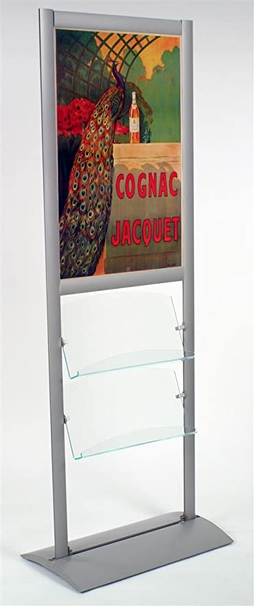Amazon.com : Displays2go Floor Standing Poster Frame with Literature ...
