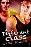 A Different Class (1Night Stand) (1Night Stand Series Book 225)