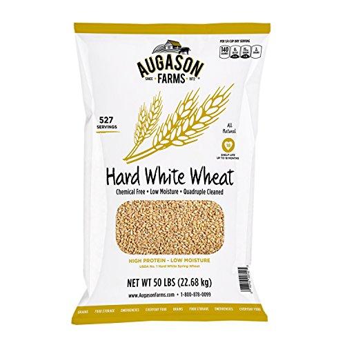 Augason Farms Hard White Wheat, 527 Servings,
