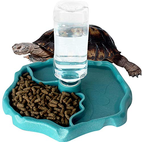 WINGOFFLY Automatic Reptile Feeders Waterer Automatic-refilling Turtle Water Dispenser Bottle Tortoise Food Water Bowl Feeding Dish for Lizards Blue (Tortoise Supply)