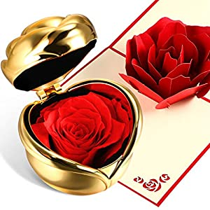 Chengu Never Withered Eternal Rose Forever Rose Preserved Flower Rosewith Gift Box and 3D Pop Up Rose Greeting Card for Valentine's Day, Anniversary Birthday Mother's Day 49