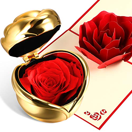 Chengu Never Withered Eternal Rose Forever Rose Preserved Flower Rosewith Gift Box and 3D Pop Up Rose Greeting Card for Valentine's Day, Anniversary Birthday Mother's Day (Red with Gold) ()