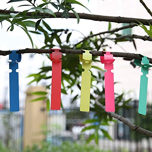 Plastic Tree Tags 500 Pcs Garden Plant Labels Nursery Garden Labels 2x21cm Wrap Around Hanging Tags(500 PCS,Colorful) by MiMiLive (Image #3)