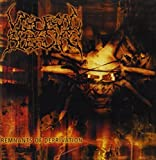 Remnants of Deprivation by Visceral Bleeding (2002-05-02)