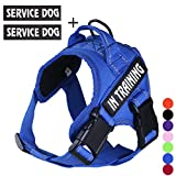 FML PET No Pull Service Dog In Training Harness with 3M Reflective Straps, Breathable and Adjustable Pet Vest with Handle, Easy Control Dog Harness for Waliking Training Running, Sent Together with A Free Pets' Gift, (7 Color, XS-XXL)