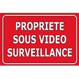 """Panneau de dissuasion """"propriéte sous vidéo surveillance"""" 300x200mm"""