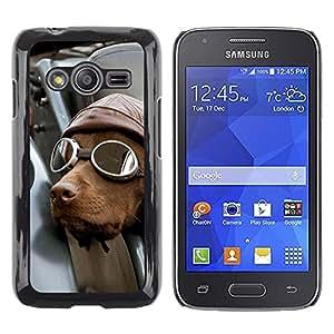 LECELL--Funda protectora / Cubierta / Piel For Samsung Galaxy Ace 4 G313 SM-G313F -- Pilot Dog Driver Chocolate Retriever --