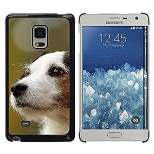 TopCaseStore / la caja del caucho duro de la cubierta de protección de la piel - Jack Russell Terrier Dog Canine - Samsung Galaxy Mega 5.8 9150 9152