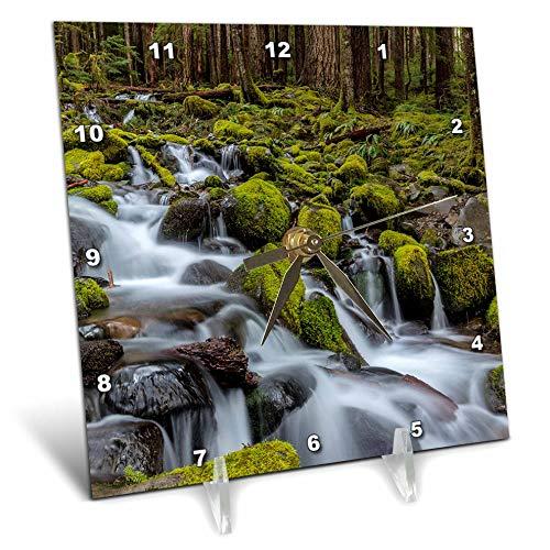 (3dRose Danita Delimont - Scenics - Small Lush Creek in Sol Duc Valley, Olympic NP, Washington State, USA - 6x6 Desk Clock (dc_315131_1))