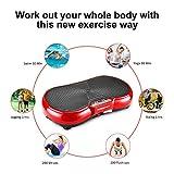 Vibration Platform Exercise Machine, Whole Body