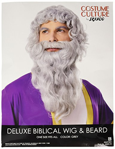 Costume Culture Men's Biblical Wig and Beard, Grey, One -