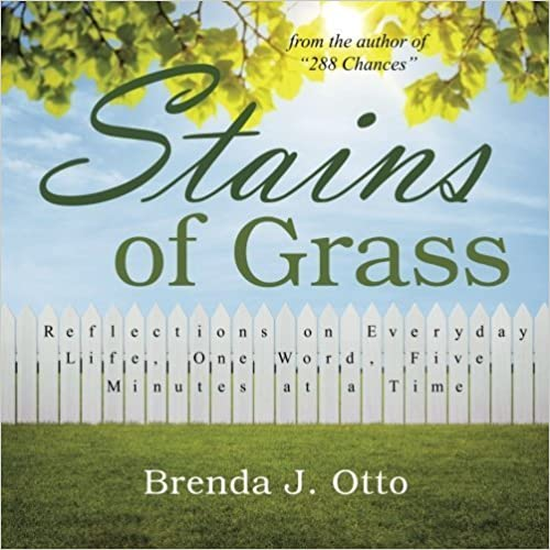 Stains of Grass: Reflections on Everyday Life, One Word, Five Minutes at a Time by Brenda J. Otto (2015-10-01)