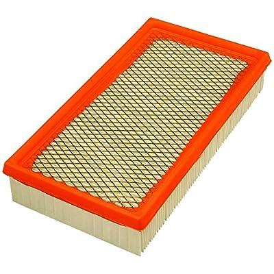 FRAM CA8969 Extra Guard Flexible Rectangular Panel Air Filter: Automotive