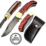 "Damascus 6.5"" Beautiful Custom Handmade Steel Brass Bolster Back Lock Folding Pocket Knife & Stainless Steel Camel Bone Wood Handle Pocket Knife – Hunting, Fishing, Outdoors, Tactical (RED)"