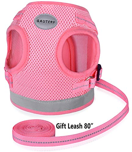"""Pet Universal Harness with Leash Set, Step-In Breathable Cat Harnesses, Adjustable Reflective Soft Mesh Dog Harnesses of Best Pet Supplies Pet Harnesses (Medium (Chest: 13"""" - 14.3""""), Pink (Mesh)) from GAUTERF"""