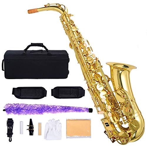 Costzon Alto Saxophone, E-Flat Gold Lacquer Finish, High F Key, Full Set Accessories with Carry Case, Neck Straps, Mouthpiece, Cork Grease, Reed, Cleaning Cloth Rod, Gloves for Beginner Student (Saxophone Mendini Alto)
